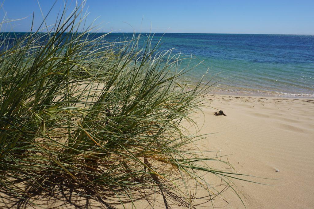 Camping Rezepte Australien