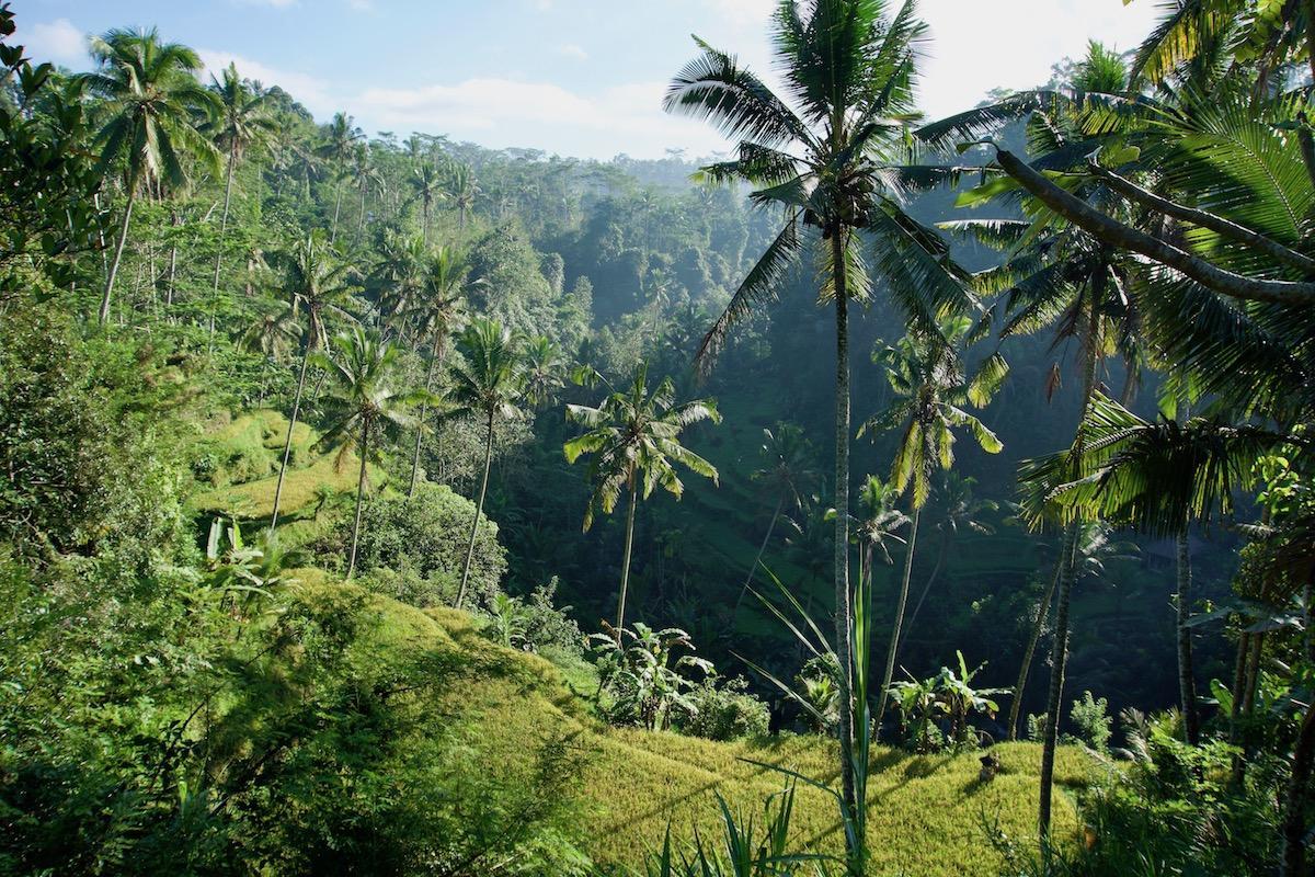 Bali Reiseroute: Highlights, Sehenswürdigkeiten und Tipps